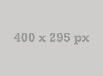 400x295