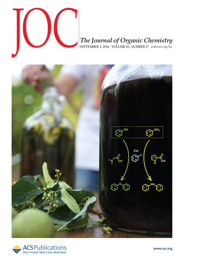 J. Org. Chem. cover by Xavi Ribas and co-workers